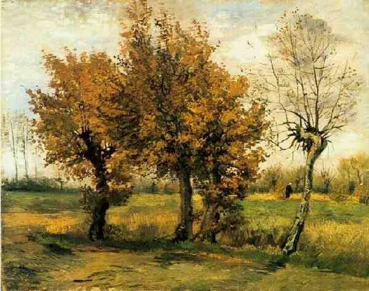 Autunno alberi